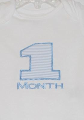 1-11 Months design