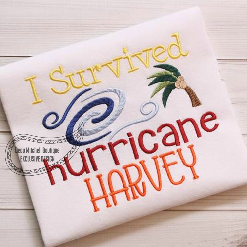 I survived Hurricane Harvey!