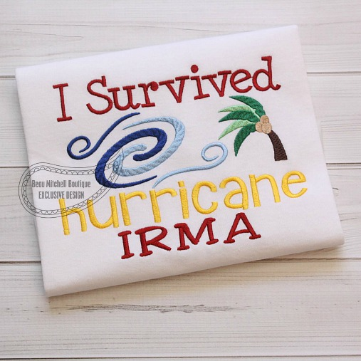I survived Hurricane Irma